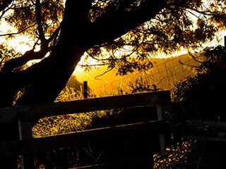 [KEEP] Sunset Glow :: Photography