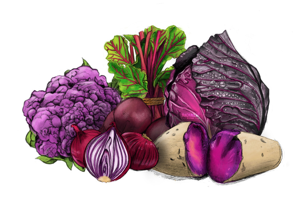 Vegetable illustrations: (Clockwise) Purple Cauliflower, Beetroot, Purple Cabbage, Purple Sweet Potato, Salad Onion