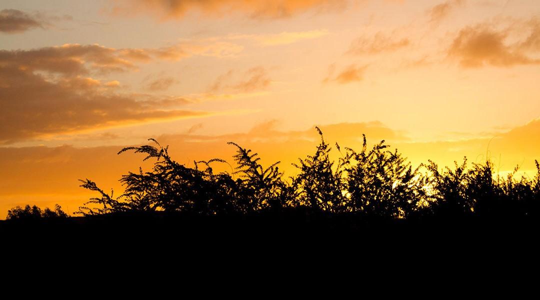 Sunset-Glow-02